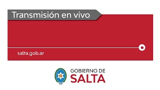 VIDEO. Gustavo Sáenz desde el Consejo Económico Social de la Provincia de Salta