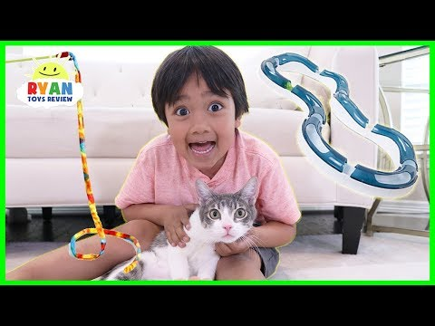 Testing Cat Gadgets and toys on our Cat!!
