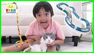 Testing Cat Gadgets and toys on our Cat!! thumbnail