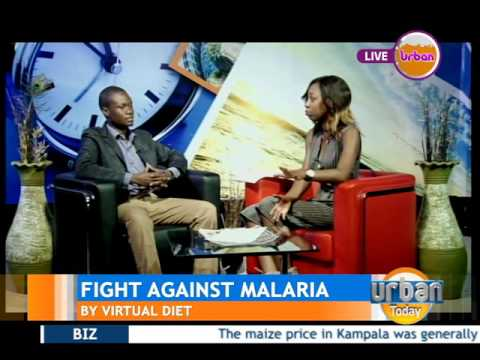 Urban Today: Fight Against Malaria