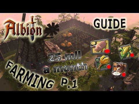25 Mil Silver/mo | Advanced Farming Guide | Albion Online