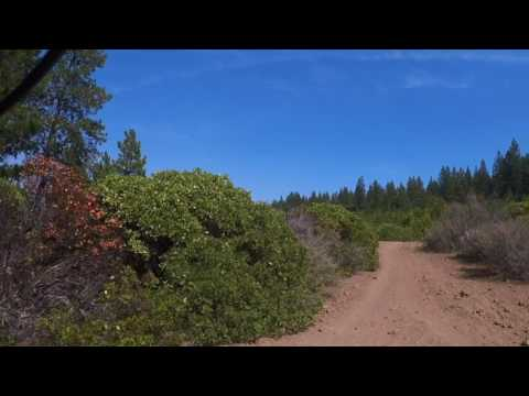 Phil's Trail - Bend, OR - May 8, 2017
