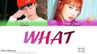 Park Jimin (박지민) - What (뭐니) (Feat. OLNL) (Color Coded Lyrics Eng/Rom/Han)