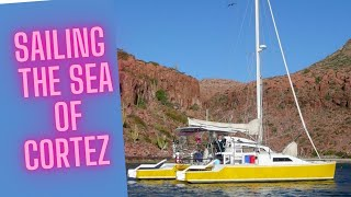 Catamaran Ocean Sailing Cruising on Light Wave with Garett & Carllie