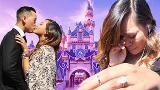 Surprise Disney Proposal