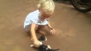 нашли котёнка