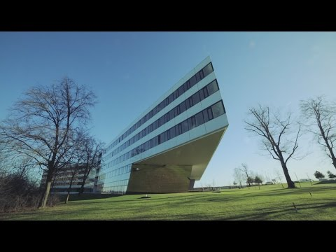 Spaces: The adidas Headquarters
