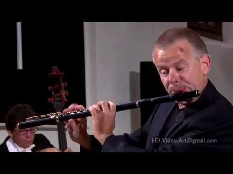 CPE Bach - Flute Concerto in D-, H.426, Wq.22 - Zagreb Soloists & Michael Hasel
