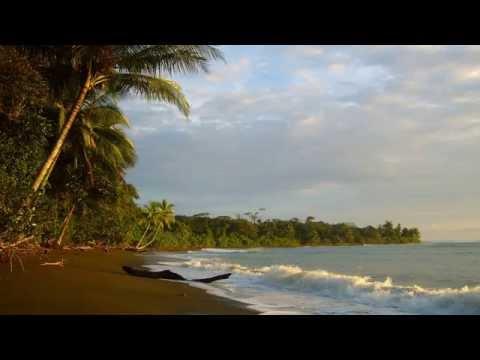Jungle Meets Ocean | Indonesia Spice Islands