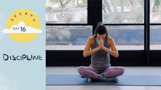Day 16 - Discipline | BREATH - A 30 Day Yoga Journey