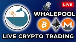 Whalepool: Live Trading Stream 24/7/365