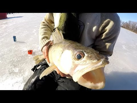 Ice Fishing In Montreal - Thicker The Ice, Bigger The Fish! Feat. Weekend Wrangler