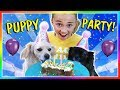 KAYLA THROWS A PUPPY PARTY | We Are The Davises