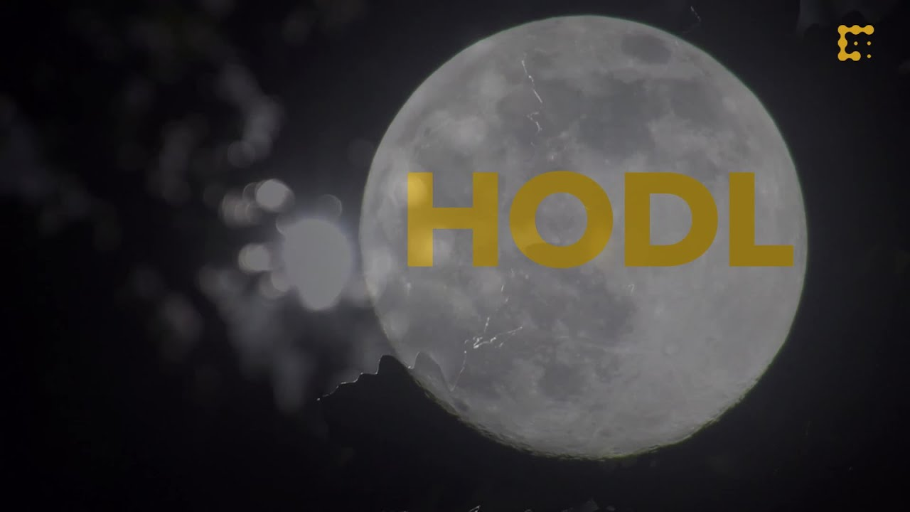 The History of HODL & Bitcoin's Best Worst Trader thumbnail