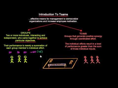 Teams vs Groups   Organisational Behavior   MeanThat