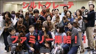 日本最大のドッグショー「ジャパンインターナショナルドッグショー20...