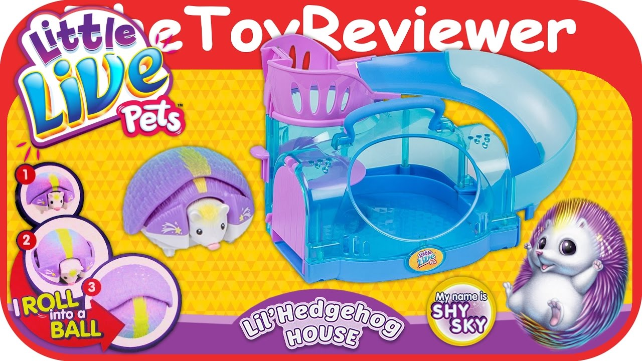 2e3cf2e8a49b Little Live Pets Lil' Hedgehog House and Hedgehog - Shy Sky Unboxing Toy  Review by TheToyReviewer