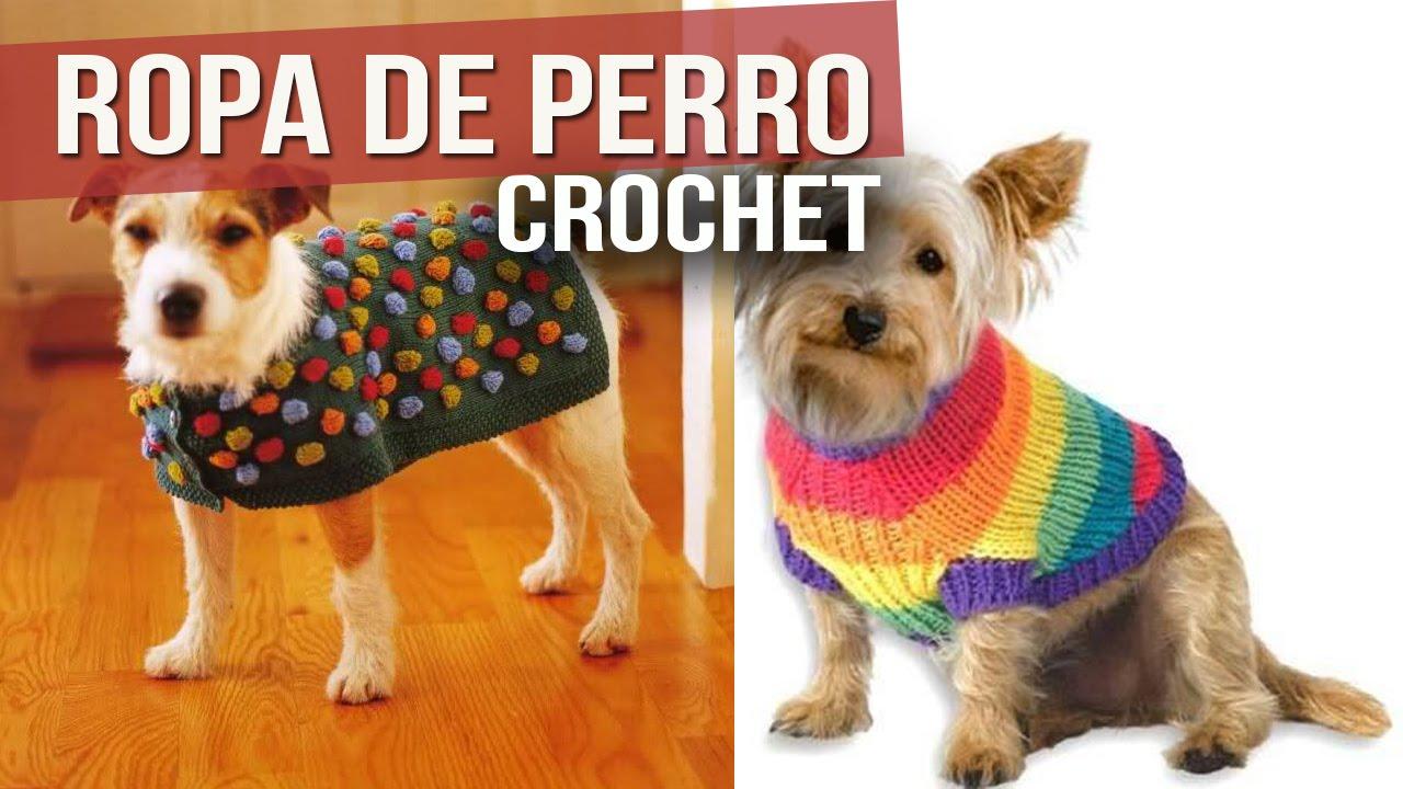 Ropa Para Perro Tejida a Crochet ( ideas y Diseños ) - YouTube