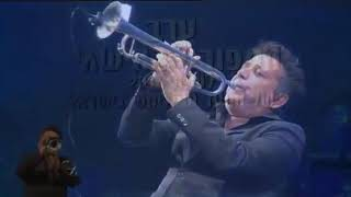 Arik Davidov TV - My Way // My Way - אריק דוידוב