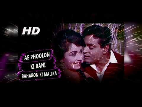 Ae Phoolon Ki Rani - Mohammed Rafi - Arzoo - Old  Song, सदाबहार गाने