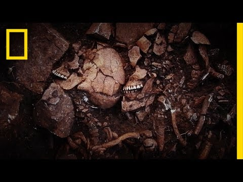 This Greek Cave is Teeming With History—and Bodies | National Geographic