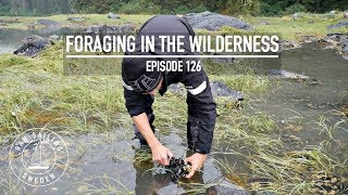 Video Foraging In The Wilderness - Ep. 126 RAN Sailing download MP3, 3GP, MP4, WEBM, AVI, FLV November 2018