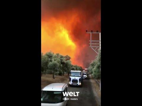 Download TÜRKEI: Flammen färben den Himmel orange   WELT #Shorts