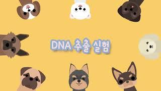 브로콜리 DNA 추출실험