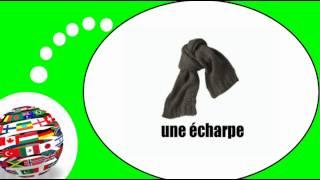 Французского видео урок = Одежда для мужчин