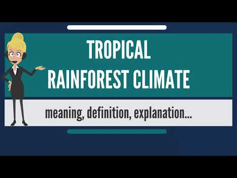 What is TROPICAL RAINFOREST CLIMATE? What does TROPICAL RAINFOREST CLIMATE mean?