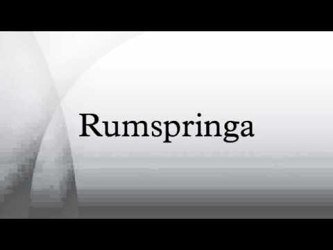 essay on rumspringa