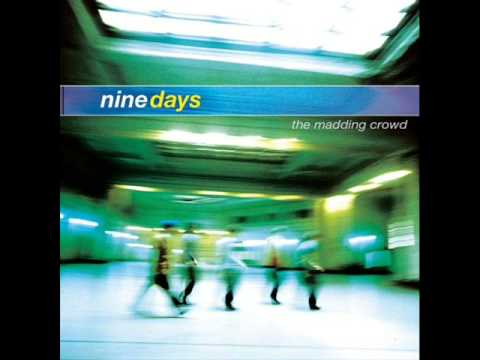 Nine Days - Back to Me - The Madding Crowd