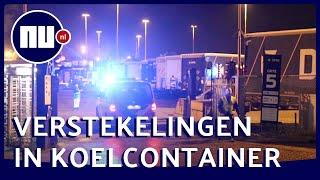 25 verstekelingen aangetroffen op veerboot Vlaardingen | NU.nl