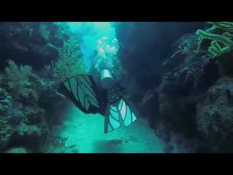 Diving the great Grand Turk wall with Oasis Divers 2014