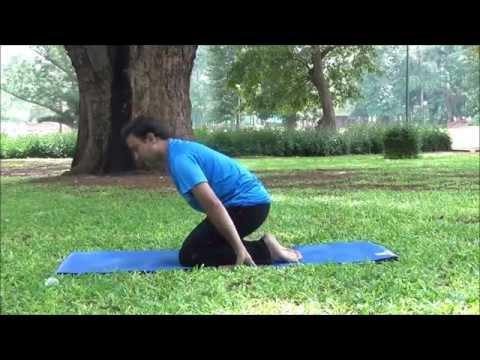 Yoga Cure for all Types of Hernia by N Sheshagiri