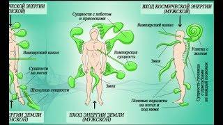 Энергетические паразиты вокруг нас. Вот как защитить себя о них
