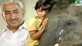 रामू हाथी - Best Scene | Main Tera Dushman | Jackie Shroff, Jaya Prada, Sunny Deol, Sridevi