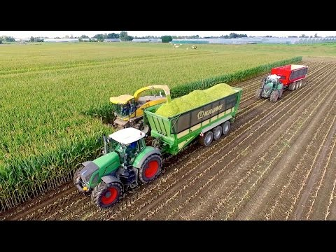 Maize Silage Race 2016 | NH FR9050 - Krone ZX560 - JD 7280R - FENDT 939/936 | Immink Aalsmeer