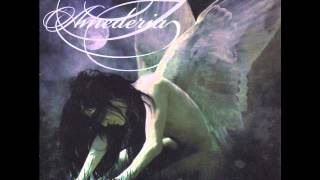 Amederia - Sometimes We Have Wings (full album) YouTube Videos