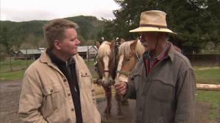 Oregon Draft Horses - America's Heartland