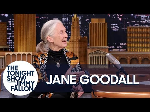 Download Youtube: Dr. Jane Goodall Teaches Jimmy About Pant-Hoots and Roots & Shoots