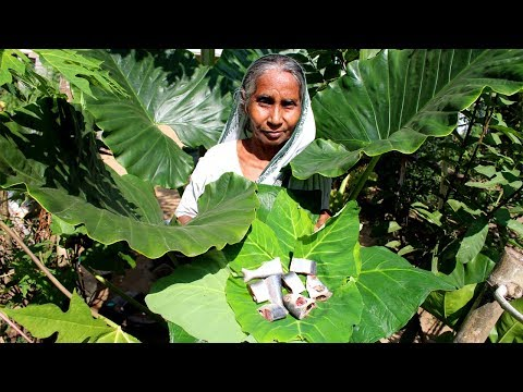 Cooking primitive boil Hilsha with Arum leaf in boil Rice by Grandma's kitchen | Natural Healthy