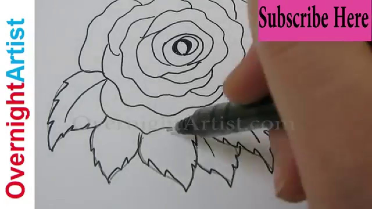 Draw A Rose Step By Step How To Most Easy Simple Way Draw A Rose Step