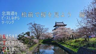 【松前城で桜を見よう 編】K.T.C 北海道をピース(ヤエー)しながらツーリング thumbnail
