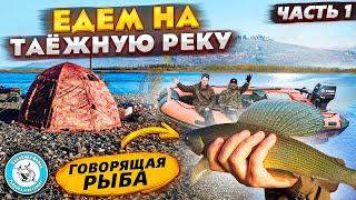 ТАЕЖНАЯ РЕЧКА За ХАРИУСОМ Простая РЫБАЛКА на спиннинг Таежная река Хариус на реке fishing