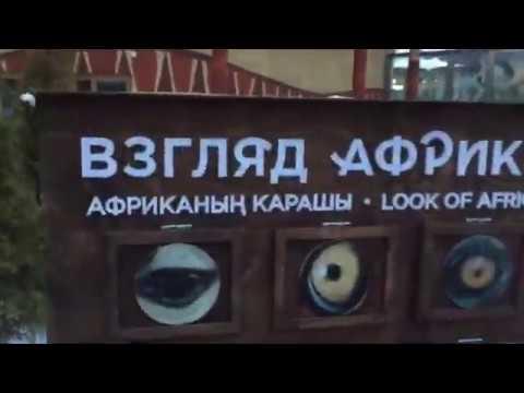 Казанский зоопарк: на стенде с дикими животными темнокожий человек!