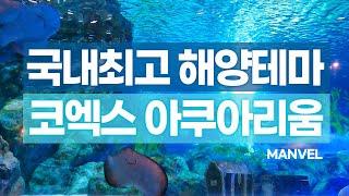 [맨블] 서울 근교 명소ㅣ코엑스 아쿠아리움