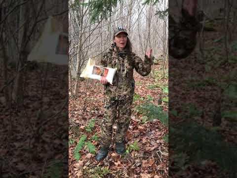 Dernière poudre chevreuil orignal urine grattage souillé buck Hunter