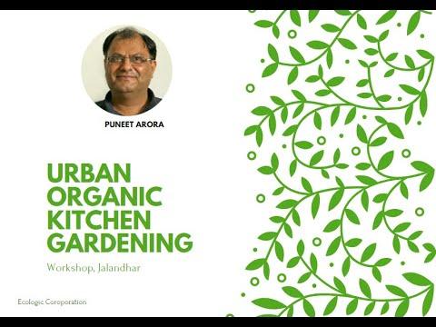 Organic Kitchen Gardening  Workshop