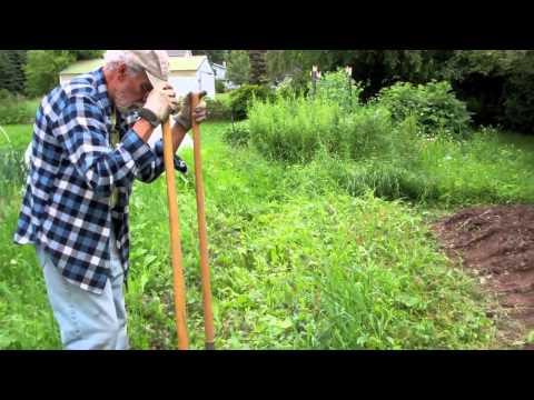 Cleaning An Overgrown Garden Bed
